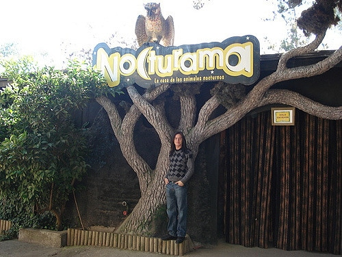 Buin Zoo, Chile